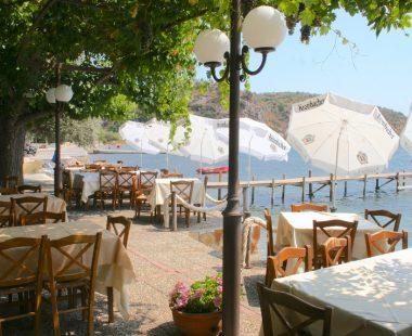Restaurant/Cafe